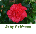 Betty Robinson
